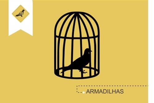 armadilhas_aves_para_pombos_imagem_antipombos-pt