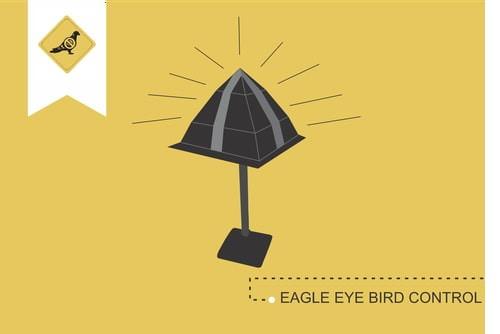 eagle-eye-bird-control_afugentar_pombos_imagem_antipombos-pt