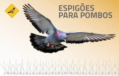 repelentes para pombos