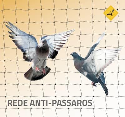 barreiras fisicas para pombos