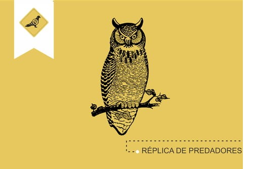 replica_de_predadores_para_afugentar_pombos_imagem_antipombos-pt